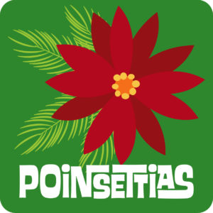 POINSETTIAS 2